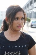 Movie Miga Miga Avasaram Recent Galleries 5280
