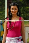 Parithi Movie New Still 4