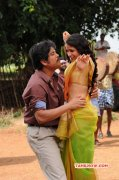 Album Sokkali Mainar Movie 9165