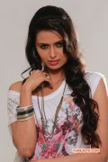 Latest Pic Meenakshi Dixit In Movie Takkar 800