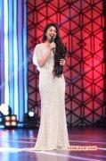 Recent Pictures Tamil Movie Event 63rd Filmfare Awards South Stills 9083