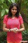 Actress Dhivya 340