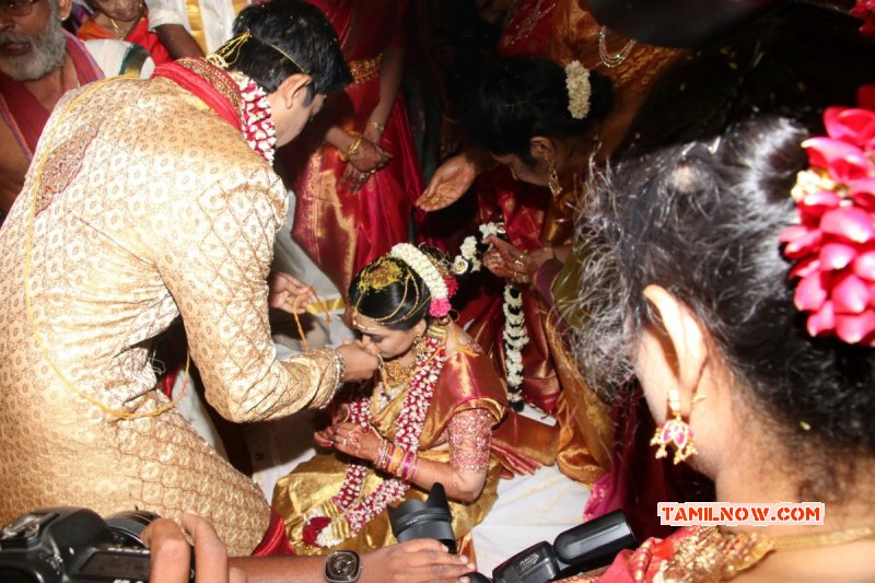 Recent Galleries Tamil Movie Event Actor Vishal Sister Aishwarya Wedding 8322