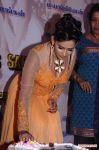 Actress Sanjana Singh Press Meet 1523