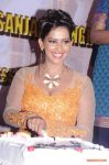 Actress Sanjana Singh Press Meet 8516