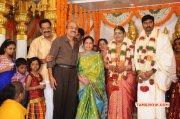 Anbalaya Prabakaran Daughter Wedding Tamil Event Nov 2014 Photos 7712