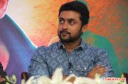 Anjaan Teaser Celebration Successmeet