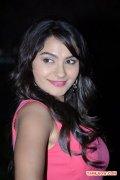 Actress Andrea Jeremiah At Aranmai Press Meet 223