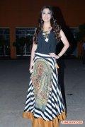 Actress Raai Laxmi Aranmai Press Meet 190