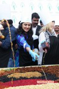 Tamil Event Cake Mixing Ceremony At Grren Park Recent Picture 3631
