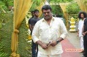 Tamil Event Celebrities At Shanthanu Keerthi Wedding Latest Images 7385