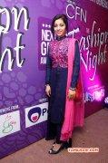 Cinema Spice Fashion Night Next Gen Fashion Awards Nov 2014 Album 1334