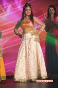 New Galleries Tamil Movie Event Face Of Madras Awards 2015 7309