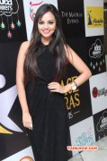 Recent Image Tamil Movie Event Face Of Madras Awards 2015 7826