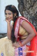 Hari Movie Audio Launch 2015 Images 1942