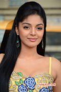 Kalaivendhan Audio Launch Latest Galleries 9056