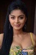 Sanam Shetty Latest Photo 424