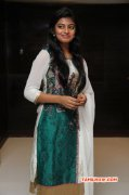 Actress Anandhi New Still 92