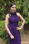 Mahabalipuram Pressmeet 8065