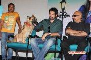 2014 Stills Naayigal Jaakirathai Pressmeet Tamil Movie Event 836