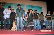 Naayigal Jaakirathai Pressmeet Tamil Movie Event Nov 2014 Images 9033