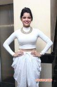 Nerungi Vaa Muthamidathe Premiere Show Tamil Event Latest Galleries 5681