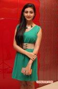 Actress Neelam Upadhyaya Function Photo 444