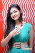 Event Om Shanti Om Audio Launch Nov 2014 Pictures 2709