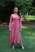 Tamannah At Petromax Pressmeet 291