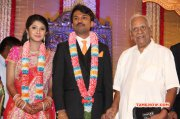 2014 Albums Raj Tv Md Daughter Marriage Reception Tamil Function 3268