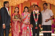 Function Raj Tv Md Daughter Marriage Reception Nov 2014 Picture 8400