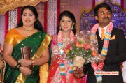 Raj Tv Md Daughter Marriage Reception