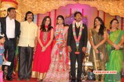 Raj Tv Md Daughter Marriage Reception Tamil Event Nov 2014 Photo 8494