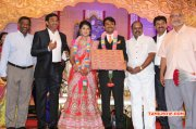 Tamil Event Raj Tv Md Daughter Marriage Reception Latest Pic 3090