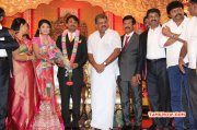 Tamil Event Raj Tv Md Daughter Marriage Reception New Photos 8765