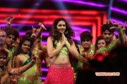 Recent Images Function Rakul Preet Singh Filmfare Awards South 2016 5988