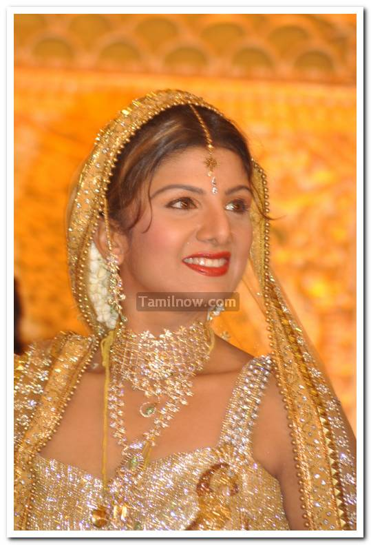 Rambha Marriage Reception 7 - Tamil Movie Event Rambha Wedding ...