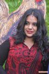 Saivam Audio Launch Photos 9643