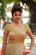 Event New Photo Actress Oviya At Sandamarutham Audio Launch 114