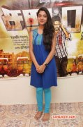 Gallery Varsha Sathuran Actress 319