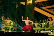 Latest Image Tamil Event Siima Awards 2016 5810