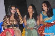 Sokku Sundaram Audio Launch