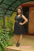 Tamil Function Sutrula Movie Team Interview Recent Photos 649