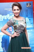 Oct 2015 Photos Function Thoongavanam Audio Launch 8489