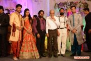 T Rajendran Daughter Wedding Reception With K Balachander 856