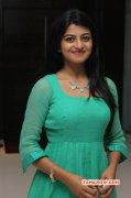Function Trisha Illana Nayanthara Trailer Launch 2015 Pictures 1627
