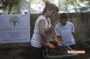 Trisha Participates In Swachh Bharat