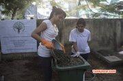 Tamil Event Trisha Participates In Swachh Bharat New Images 3347