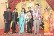 V Swamynathan Son Reception 4715