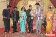 V Swamynathan Son Reception 7595